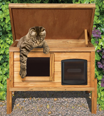 Review of The Hutch Company CATKEN1