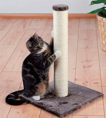 Review of TRIXIE Pet Products 62 cm Parla scratching post