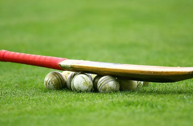 Best Cricket Bats to Help Your Kid Fall in Love With the Game