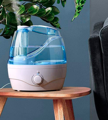 5 Best Humidifiers Reviews of 2020 in the UK BestAdvisers