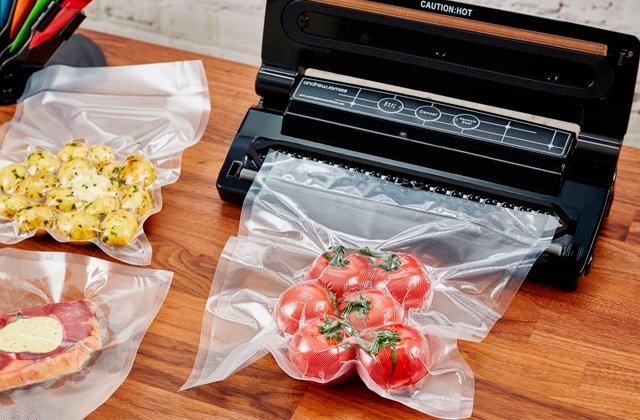 Best Vacuum Sealers
