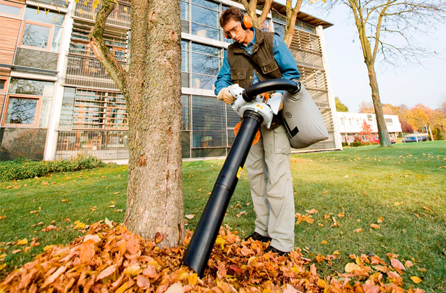 Best Leaf Vacuums for Tidy Yard