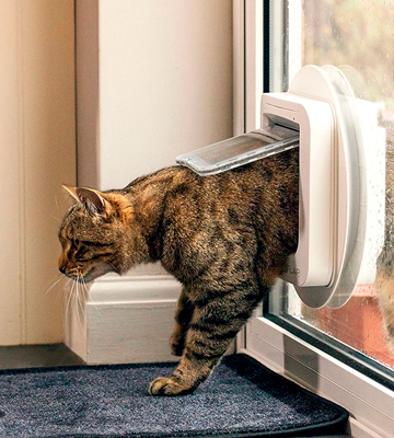 Review of SureFlap SUR001 Cat Flap with Microchip Identification