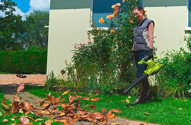 Leaf Cleaning