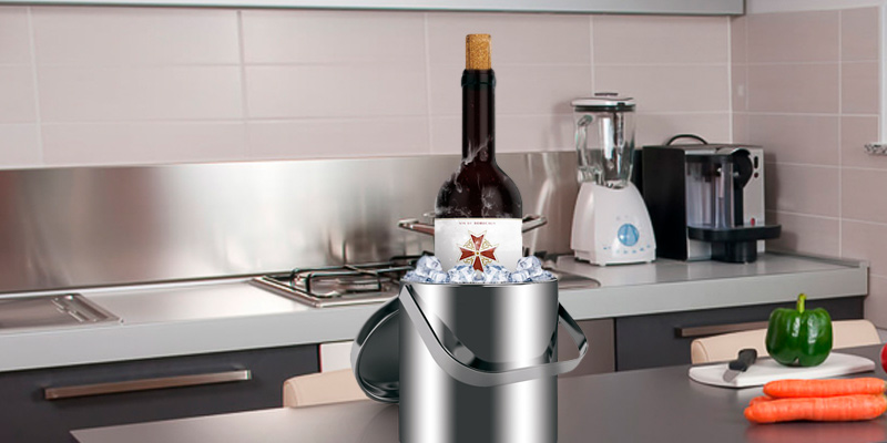 Review of Sailnovo Stainless Steel Double Wall Ice Bucket with Tongs and lids
