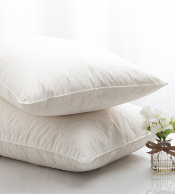 Review of Silentnight 374996GE Goose Feather Pillow