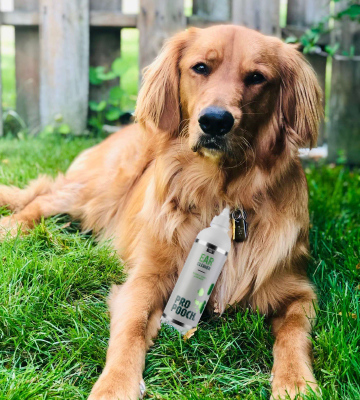 Review of Pro Pooch 250 ML Dog Ear Cleaner