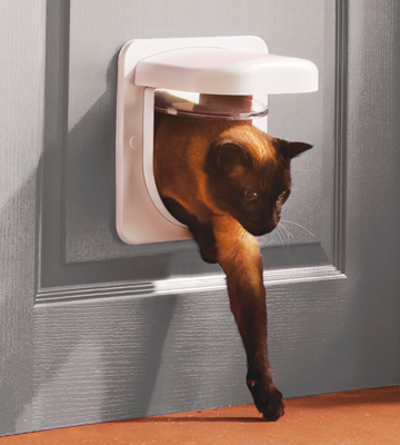 Review of PetSafe 82690 Petporte Smart Flap Microchip Cat Door