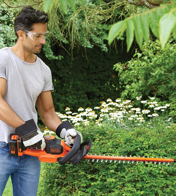 Review of BLACK+DECKER Anti-Jam Hedge Trimmer with 2 Ah Battery