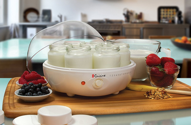 Best Yoghurt Makers