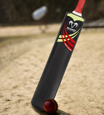 Review of RAM 3299 Crazy Cricket Bats