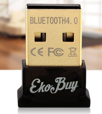 Review of EkoBuy ekb10155 Bluetooth USB Adapter for PC