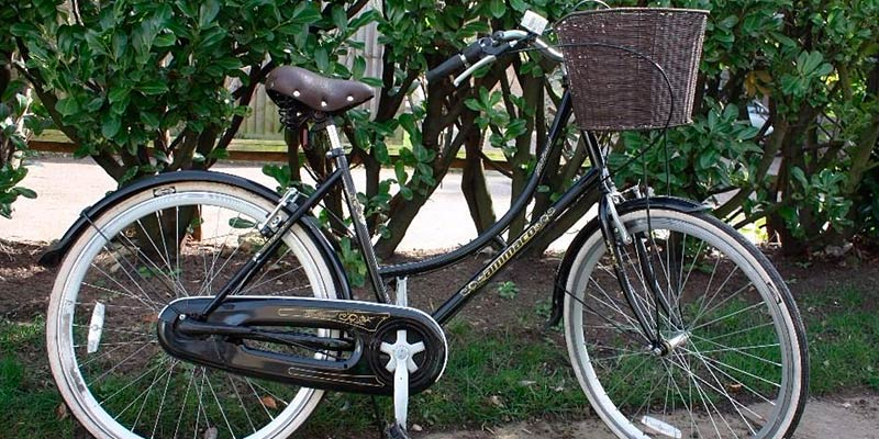 AMMACO Traditional Dutch Style Cruiser Bike in the use