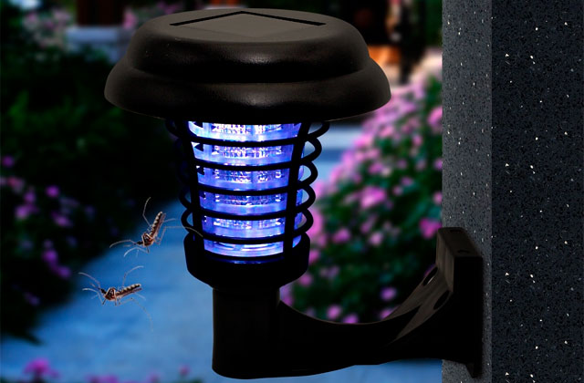 Best Outdoor Bug Zappers