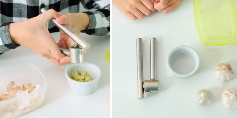 Review of IKEA KONCIS Garlic Press